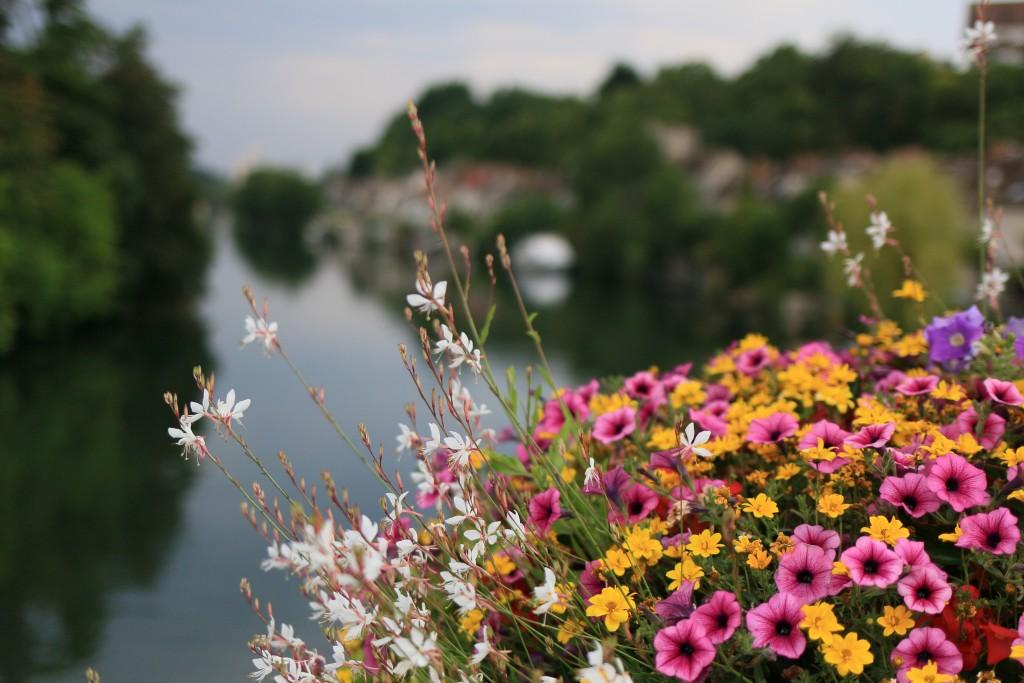 Découverte de la Seine et Marne